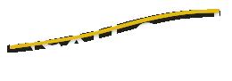 nextlevel IS logo